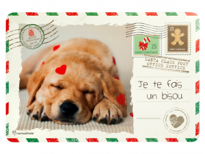 12 Tovagliette Polipropilene Dogs/cats Natale*l