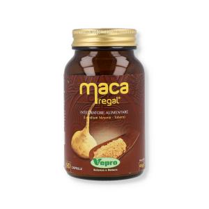 MACA REGAL - 90CPS
