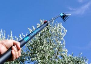 Abbacchiatore Pettine LISAM OLIVECO scuotitore per raccolta olive elettrico