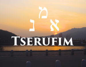 TSERUFIM 45 GTT - 30ML