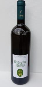 6 bottiglie di Bologna Bianco 2019