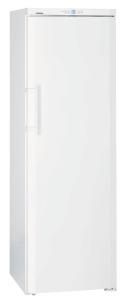 Liebherr GNP 3013-21 congelatore Libera installazione 257 L Bianco