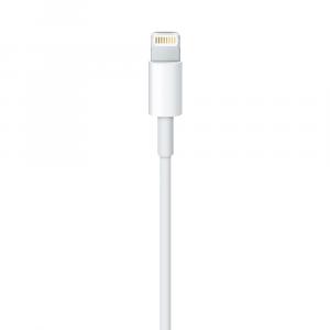 Apple Cavo da Lightning a USB (1 m)