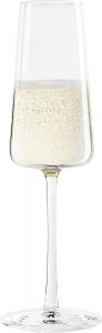 Set di 6 calici da champagne Power 240 ml in cristallo senza piombo